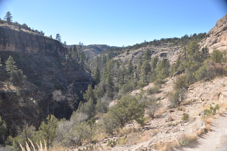gila_national_forest_18dec18m.jpg
